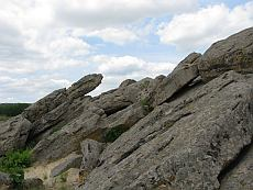Каменная могила. Черепаха.