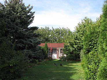 Уютный тенистый двор